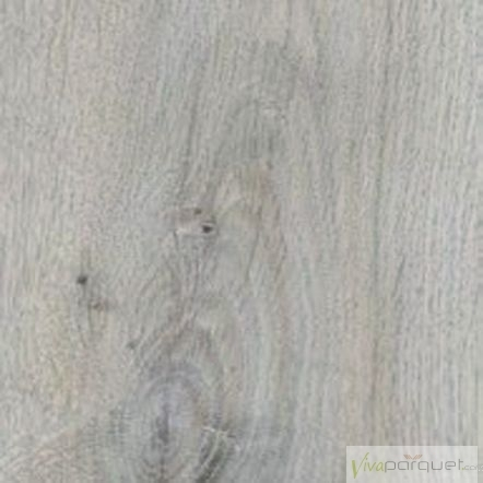 Gold Laminate PROXL Roble Gris 5954